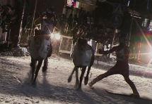 Reindeerspotting_dokumentti